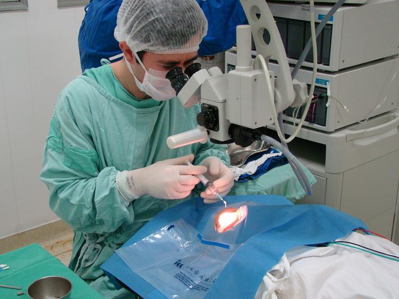 cirurgias de catarata em Alagoinhas