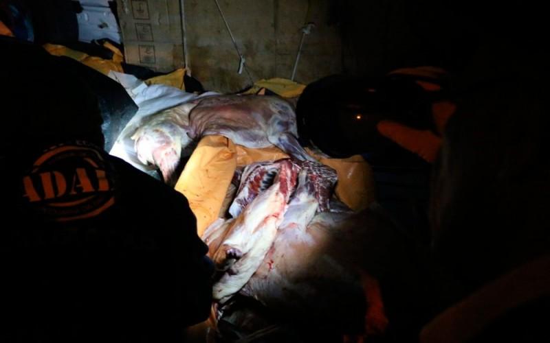 Carnes tinham origem irregular, segundo a SSP (Foto: Alberto Maraux / SSP)